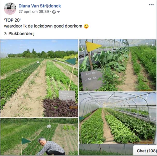 Diana Van Strijdonck, Facebookpost met tip 7 om de lockdown door te komen.