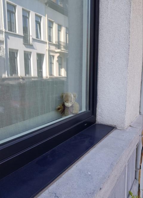 Liesbeth Cuppens, Beer op de vensterbank.